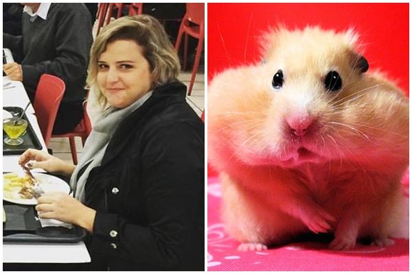 hamster chines + renata poskus