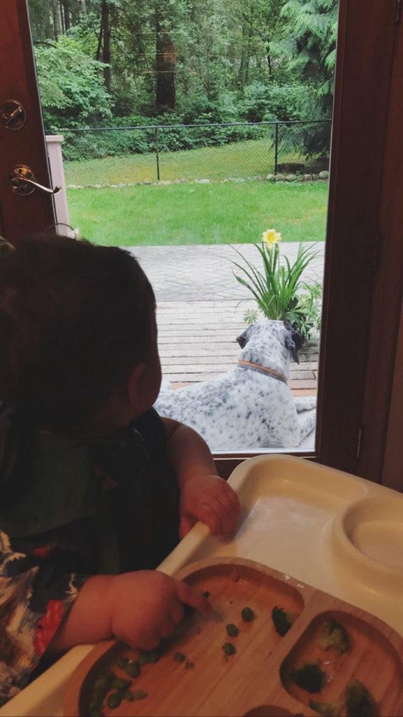 Um bebe olhando para um cachorro ao mesmo tempo que se alimenta